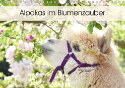 Alpakas im Blumenzauber (Wandkalender 2019 DIN A4 quer) von Rentschler,  Heidi