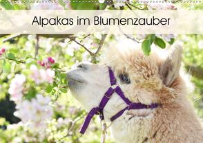 Alpakas im Blumenzauber (Wandkalender 2020 DIN A2 quer) von Rentschler,  Heidi