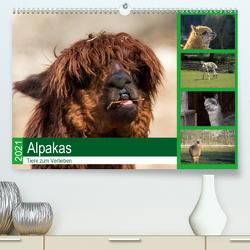 Alpakas – Tiere zum Verlieben (Premium, hochwertiger DIN A2 Wandkalender 2021, Kunstdruck in Hochglanz) von Mentil,  Bianca