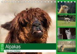 Alpakas – Tiere zum Verlieben (Tischkalender 2019 DIN A5 quer) von Mentil,  Bianca