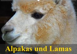 Alpakas und Lamas (Wandkalender 2021 DIN A2 quer) von Stanzer,  Elisabeth