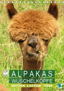 Alpakas: Wuschelköpfe – Edition lustige Tiere (Tischkalender 2019 DIN A5 hoch) von CALVENDO,  k.A.