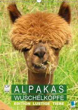 Alpakas: Wuschelköpfe – Edition lustige Tiere (Wandkalender 2019 DIN A3 hoch) von CALVENDO,  k.A.