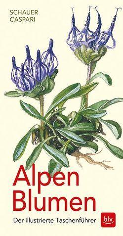 Alpen-Blumen von Caspari,  Claus, Caspari,  Stefan, Schauer,  Thomas
