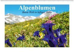 Alpenblumen. Bunte Welt in luftiger Höhe (Wandkalender 2019 DIN A2 quer) von Stanzer,  Elisabeth