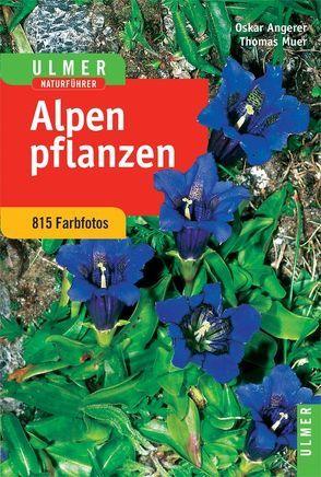 Ulmer Naturführer Alpenpflanzen von Angerer,  Oskar, Muer,  Thomas