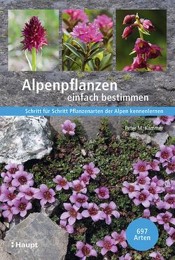 Alpenpflanzen einfach bestimmen von Kammer,  Peter M.