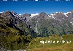 Alpine Ausblicke (Wandkalender 2019 DIN A2 quer) von Steinbrenner,  Ulrike