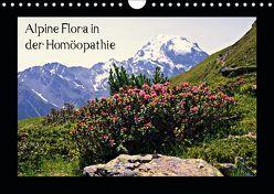 Alpine Flora in der Homöopathie (Wandkalender 2019 DIN A4 quer) von Schimon,  Claudia