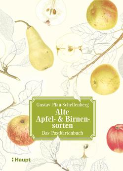 Alte Apfel- & Birnensorten – Das Postkartenbuch von Pfau-Schellenberg,  Gustav