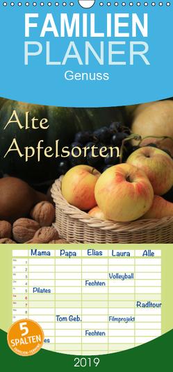 Alte Apfelsorten – Familienplaner hoch (Wandkalender 2019 , 21 cm x 45 cm, hoch) von Bildarchiv / I. Gebhard,  Geotop
