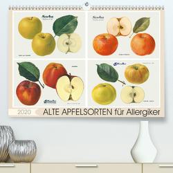 Alte Apfelsorten für Allergiker (Premium, hochwertiger DIN A2 Wandkalender 2020, Kunstdruck in Hochglanz) von M. Laube,  Lucy