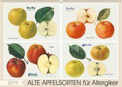 Alte Apfelsorten für Allergiker (Wandkalender 2019 DIN A2 quer)