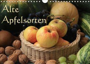Alte Apfelsorten (Wandkalender 2018 DIN A4 quer) von Bildarchiv/I. Gebhard,  Geotop