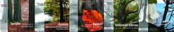 Alte Buchenwälder Deutschlands von Blahy,  Beate, Flade,  Martin, Großmann,  Manfred, Jeschke,  Lebrecht, Klaus,  Siegfried, Knapp,  Hans Dieter Knapp, Panek,  Norbert, Spieß,  Hans-Jürgen, Wernicke,  Peter