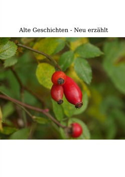 Alte Geschichten – Neu erzählt. von Giefers,  Hildegard