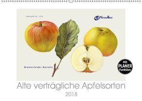 Alte verträgliche Apfelsorten (Wandkalender 2018 DIN A2 quer) von M. Laube,  Lucy
