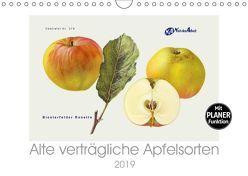 Alte verträgliche Apfelsorten (Wandkalender 2019 DIN A4 quer) von M. Laube,  Lucy