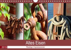 Altes Eisen. Rostige Impressionen (Wandkalender 2019 DIN A4 quer) von Lehmann,  Steffani
