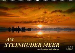 Am Steinhuder Meer / Geburtstagskalender (Wandkalender 2019 DIN A2 quer) von Roder,  Peter