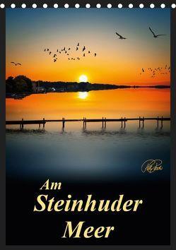 Am Steinhuder Meer / Planer (Tischkalender 2019 DIN A5 hoch) von Roder,  Peter