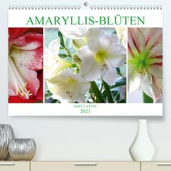 Amaryllis-Blüten (Premium, hochwertiger DIN A2 Wandkalender 2021, Kunstdruck in Hochglanz) von Kruse,  Gisela