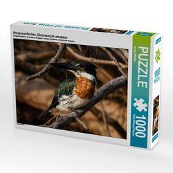 Amazonasfischer, Chloroceryle amazona 1000 Teile Puzzle quer von Woehlke,  Juergen