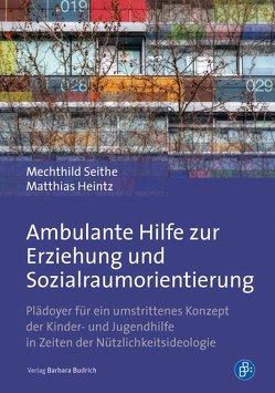 Ambulante Hilfe zur Erziehung und Sozialraumorientierung von Heintz,  Matthias, Seithe,  Mechthild