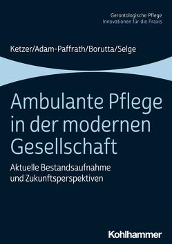 Ambulante Pflege in der modernen Gesellschaft von Adam-Paffrath,  Renate, Borutta,  Manfred, Brandenburg,  Hermann, Ketzer,  Ruth, Selge,  Karola