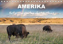 Amerika – Naturschönheiten des Westens (Tischkalender 2019 DIN A5 quer) von Heidorn,  Fabienne