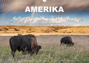 Amerika – Naturschönheiten des Westens (Wandkalender 2018 DIN A3 quer) von Heidorn,  Fabienne