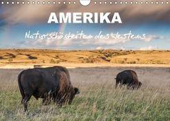 Amerika – Naturschönheiten des Westens (Wandkalender 2018 DIN A4 quer) von Heidorn,  Fabienne