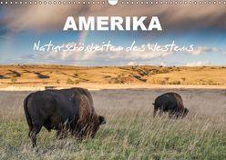 Amerika – Naturschönheiten des Westens (Wandkalender 2019 DIN A3 quer) von Heidorn,  Fabienne