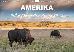 Amerika – Naturschönheiten des Westens (Wandkalender 2019 DIN A4 quer) von Heidorn,  Fabienne