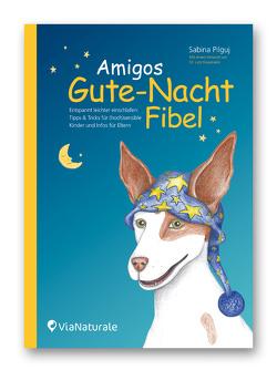 Amigos Gute-Nacht-Fibel von Graumann,  Dr. Lutz, Pilguj,  Sabina