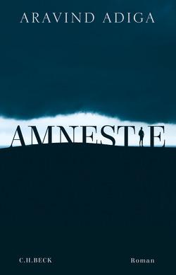 Amnestie von Adiga,  Aravind, Timmermann,  Klaus, Wasel,  Ulrike