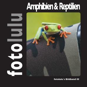 Amphibien & Reptilien von fotolulu