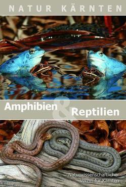 Amphibien und Reptilien Kärntens von Gutleb,  Bernhard, Happ,  Helga