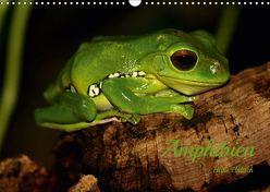 Amphibien (Wandkalender 2019 DIN A3 quer) von Hultsch,  Heike
