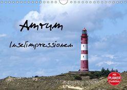 Amrum – Inselimpressionen (Wandkalender 2019 DIN A4 quer) von Potratz,  Andrea