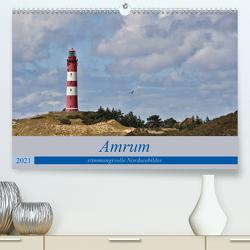 Amrum – stimmungsvolle Nordseebilder (Premium, hochwertiger DIN A2 Wandkalender 2021, Kunstdruck in Hochglanz) von Potratz,  Andrea