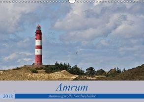 Amrum – stimmungsvolle Nordseebilder (Wandkalender 2018 DIN A3 quer) von Potratz,  Andrea