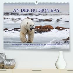 AN DER HUDSON BAY (Premium, hochwertiger DIN A2 Wandkalender 2020, Kunstdruck in Hochglanz) von Junio,  Michele