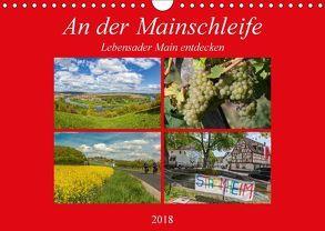 An der Mainschleife – Lebensader Main entdecken (Wandkalender 2018 DIN A4 quer) von Will,  Hans