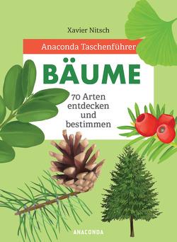 Anaconda Taschenführer Bäume von Mayer,  Felix, Nitsch,  Xavier