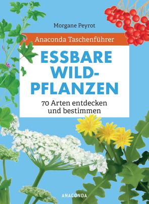 Anaconda Taschenführer Essbare Wildpflanzen von Herzog,  Lise, Peyrot,  Morgane, Zuber,  Ilona