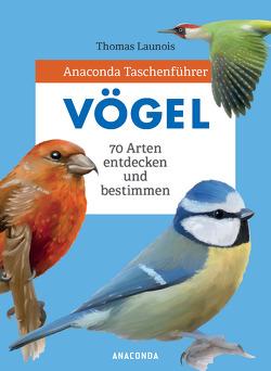 Anaconda Taschenführer Vögel von Launois,  Thomas, Tengs,  Svenja