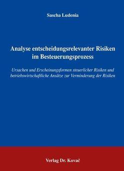 Analyse entscheidungsrelevanter Risiken im Besteuerungsprozess von Ludenia,  Sascha