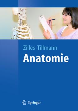 Anatomie von Tillmann,  Bernhard, Zilles,  Karl