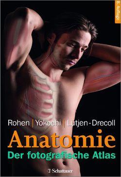 Anatomie des Menschen von Lütjen-Drecoll,  Elke, Rohen,  Johannes W, Yokochi,  Chihiro M.D.